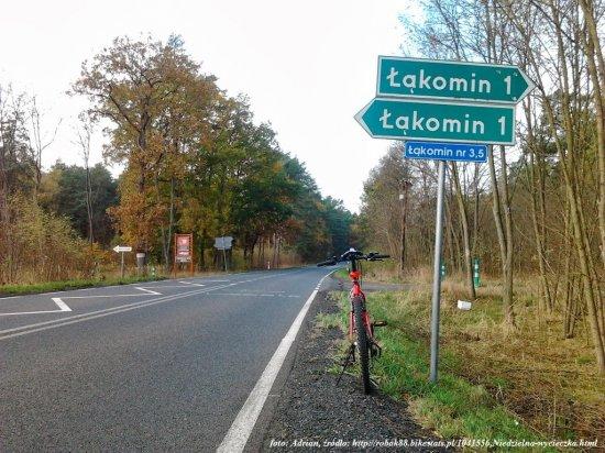 - lakomin04.jpg